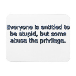 Everyone is entitled to be stupid, rectangular magnet