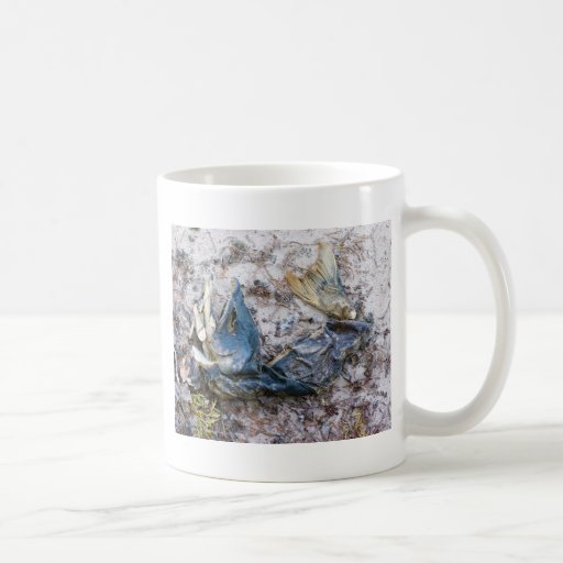 Everyone loves Salmon Coffee Mug