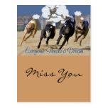Everyone Needs a Dream Post Cards