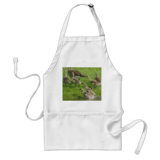 Everyone Out Adult Apron