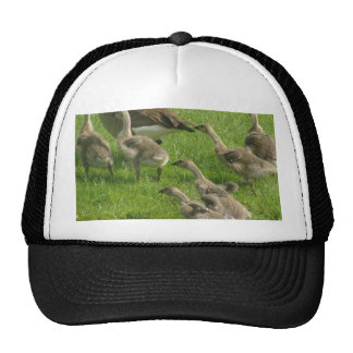 Everyone Out Trucker Hat