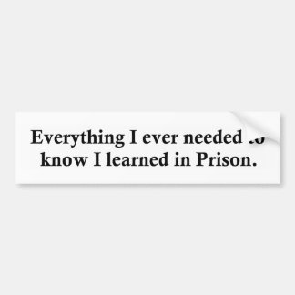 Everything and Prison Bumper Sticker