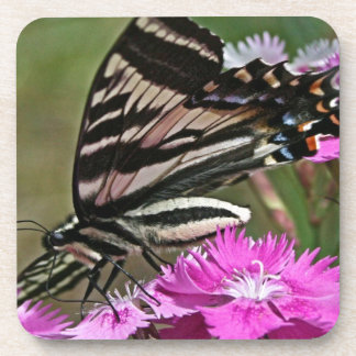 Everything Butterfly Beverage Coaster