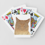 Everything Cats Design Deck Of Cards