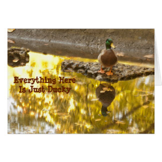 """""""EVERYTHING HERE IS JUST DUCKY"""" /DUCK PHOTO CARD"""
