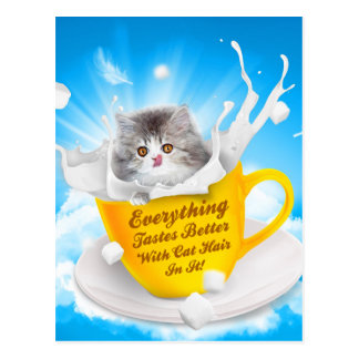 Everything Tastes Better With Cat Hair In It Kitty Postcard