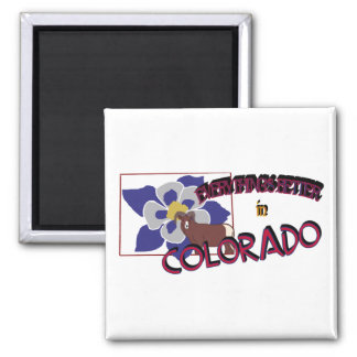 Everything's Better in Colorado Magnet