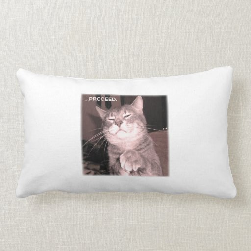 Evil cat says proceed with the master plan throw pillows