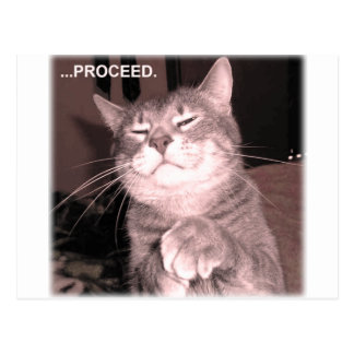 Evil cat says proceed with the master plan postcard