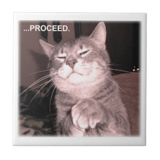Evil cat says proceed with the master plan tile