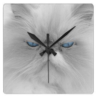 Evil Grandfather of Grumpy Cat Square Wall Clock