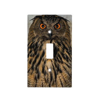 Evil looking owl light switch cover