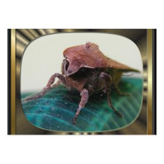 Evil Moth 2 ~ ATC Business Card Template