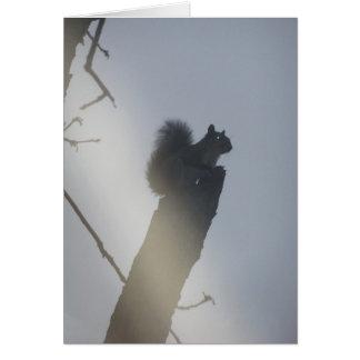 EvilSquirrel Tarjeta De Felicitación