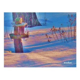 evoluc postcards