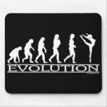 Evolución - danza tapete de raton