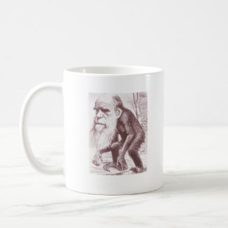 """Evolución: """"Darwin es taza de mi homeboy"""""""