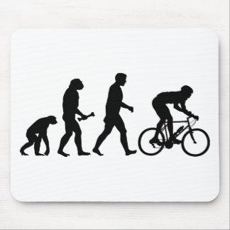 Evolución de ciclo tapete de ratones