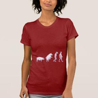 Evolución de hombres camisetas