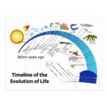 Evolución de la vida en diagrama de la cronología  postal