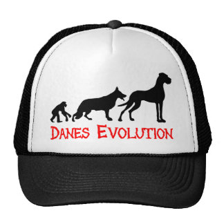 Evolución de los daneses gorras