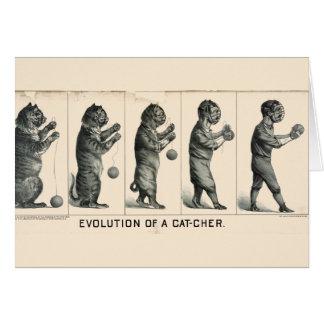 Evolución de un colector felicitaciones