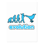 Evolución del gorjeo postales
