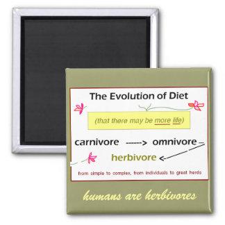 Evolución del imán de la dieta