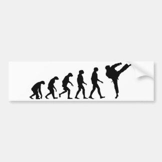 Evolución del karate pegatina para auto