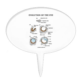 Evolución del ojo figura para tarta