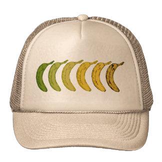 Evolución del plátano gorros bordados