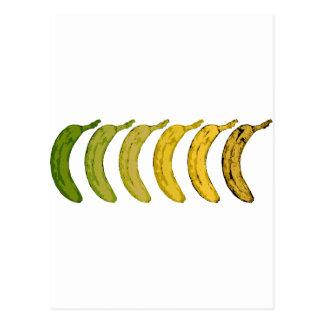 Evolución del plátano postal
