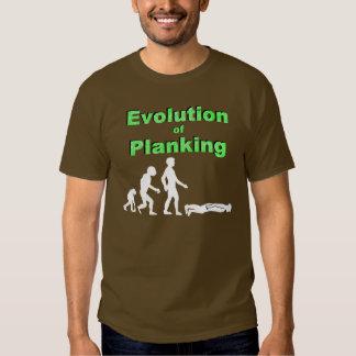 Evolución del tablaje poleras