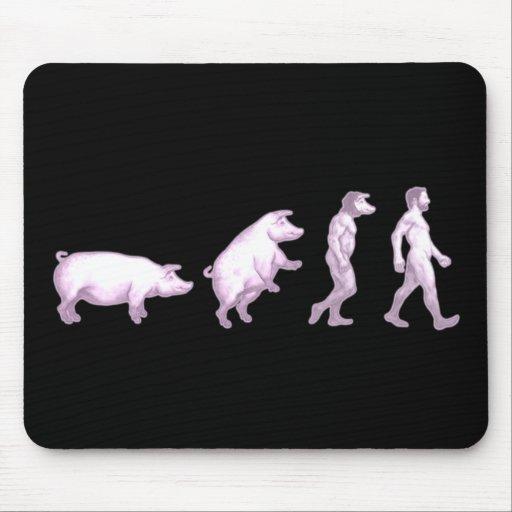 Evolución divertida de cerdos alfombrilla de ratones