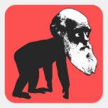 Evolución divertida de Darwin Colcomanias Cuadradas Personalizadas