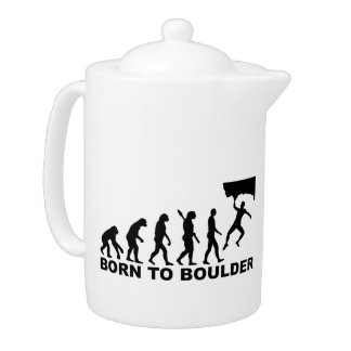 Evolución llevada a Boulder