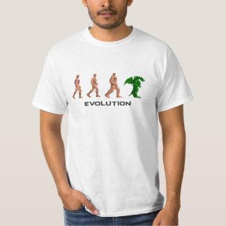 Evolución Playeras