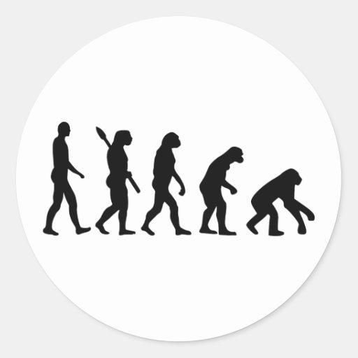 Evolution backwards round sticker