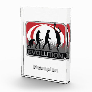 Evolution Basketball Acrylic Award