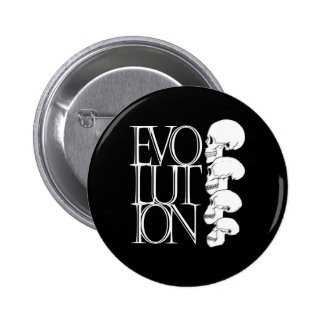 Evolution (Black) Pinback Button