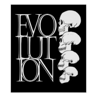 Evolution (black, with white border) poster