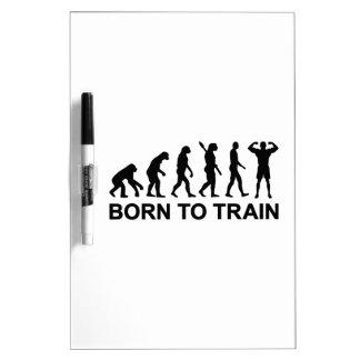 Evolution Bodybuilding born to train Dry Erase Whiteboard