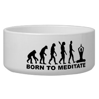 Evolution born to meditate pet bowl