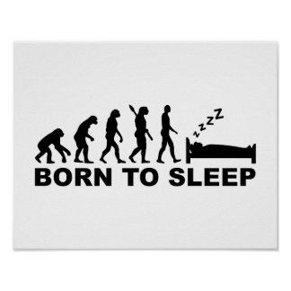 Evolution born to sleep poster