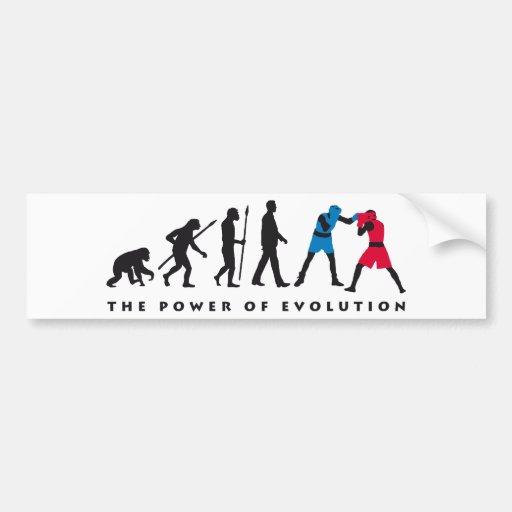 evolution box sport bumper stickers