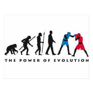 evolution boxeas sport tarjetas postales