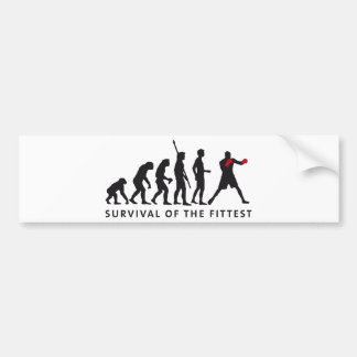 evolution boxing car bumper sticker
