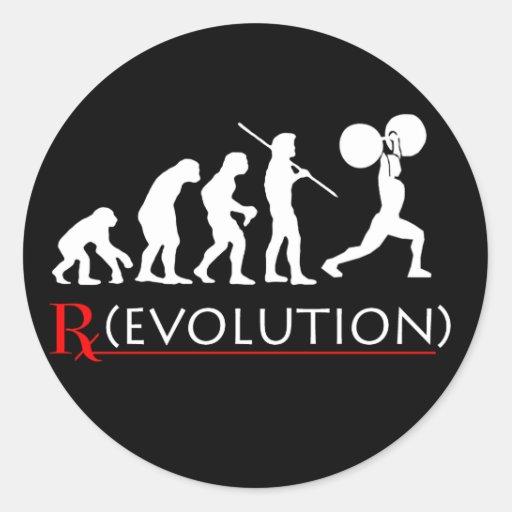 Evolution Chart Sticker