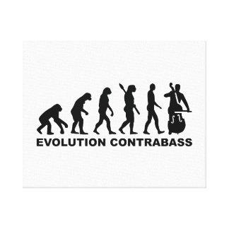 Evolution Contrabass Stretched Canvas Prints