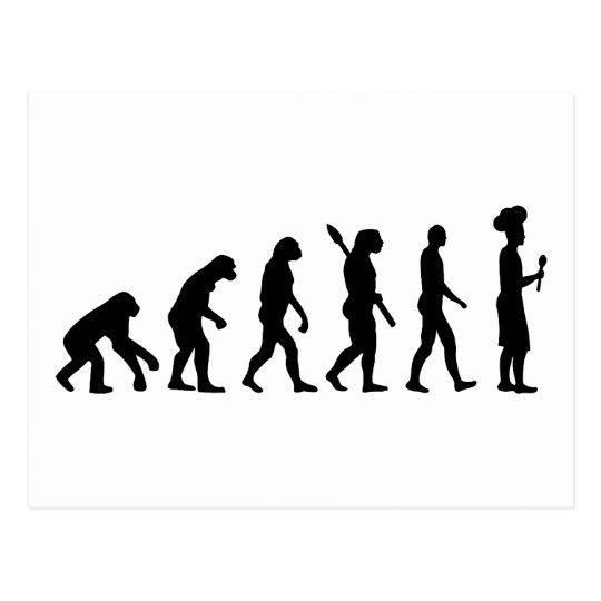 Evolution cook chef postcard